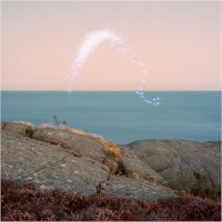 CASSANDRA JENKINS – an overview phenomenal nature